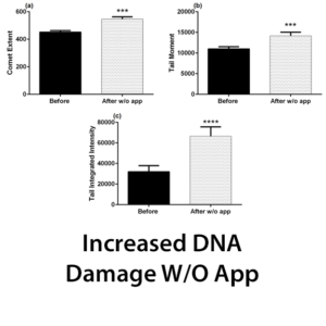 Increased DNA Damage W/O App